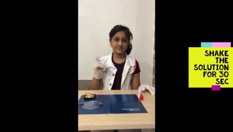 Sanaya Lakhani Dendrites Experiment