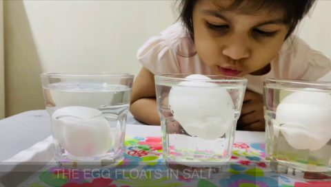 Density Of Water : The Floating Eggs