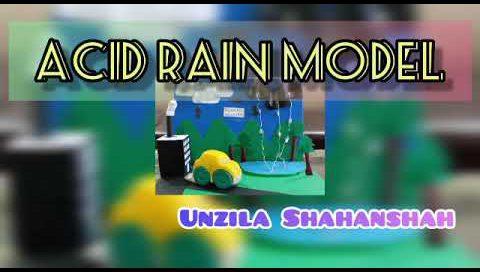 Acid Rain Model