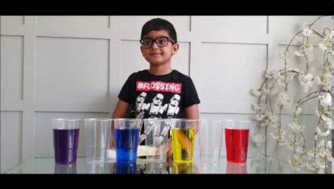 The Walking Water Science Experiment For Children.