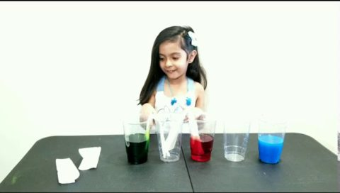 Walking Water Experiment By Iyara Momin